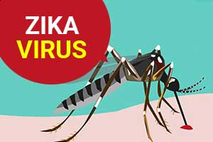Centre sends ICMR team to Jaipur as Zika cases rise to 100