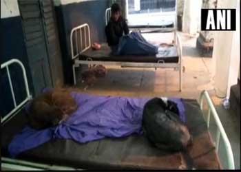 Bihar: Stray dogs enjoy leisure time on govt hospital beds