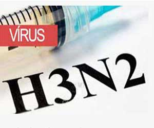 H3N2 strain overtakes swine flu virus: DAK