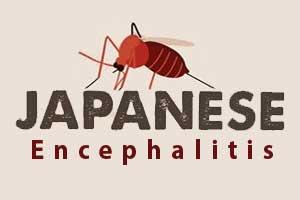 Japanese Encephalitis Update: 7 cases detected in Arunachal Pradesh