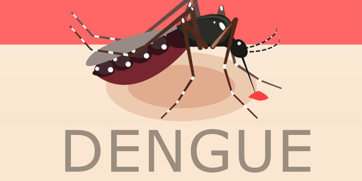 Take 650 mg paracetamol instead of 500 mg to cure dengue: Uttarakhand CM to patients